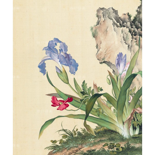 Papaver rhoeas and Iris japonica, Giuseppe Castiglione, Qing Dynasty, Immortal Blossoms in an Everlasting Spring, Giclée