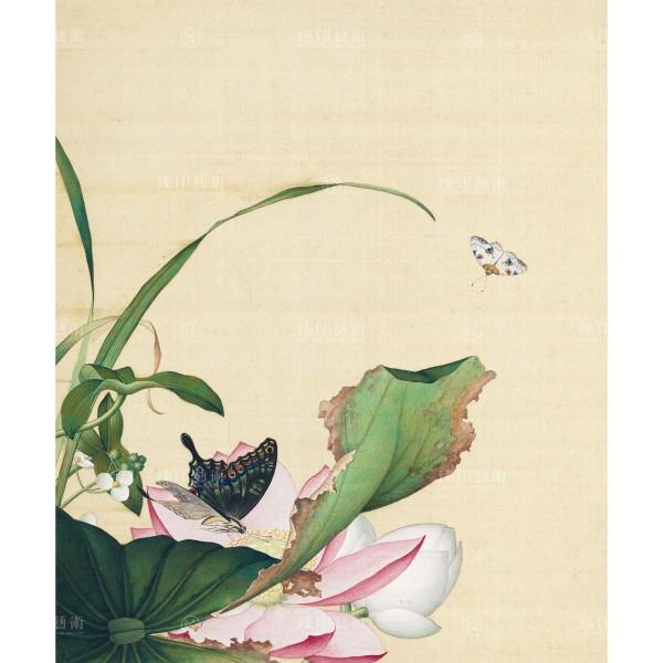 Lotus Flower and Arrowhead, Giuseppe Castiglione, Qing Dynasty, Immortal Blossoms in an Everlasting Spring, Giclée