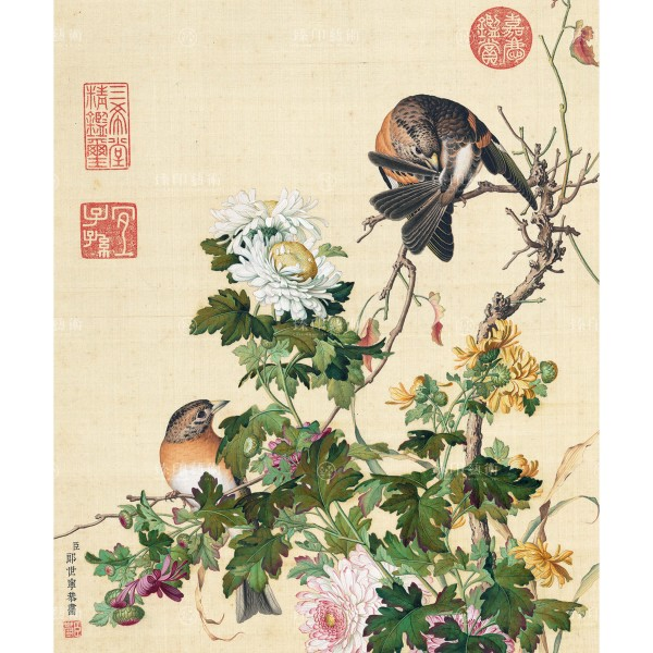 Chrysanthemum, Giuseppe Castiglione, Qing Dynasty, Immortal Blossoms in an Everlasting Spring, Giclée