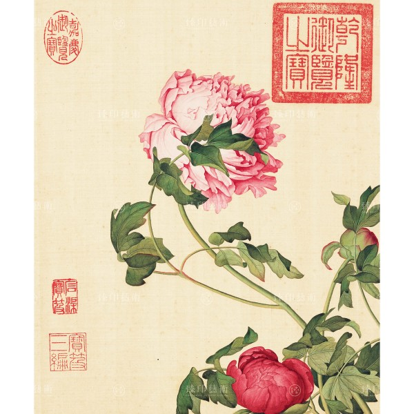Peonies, Giuseppe Castiglione, Qing Dynasty, Immortal Blossoms in an Everlasting Spring, Giclée