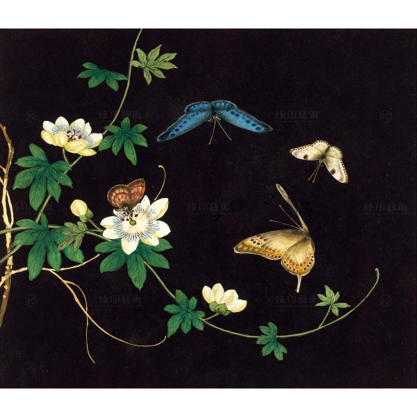 Cats and Butterflies of Longevity, Passionflower, Shen Zhenlin, Qing dynasty, Giclée