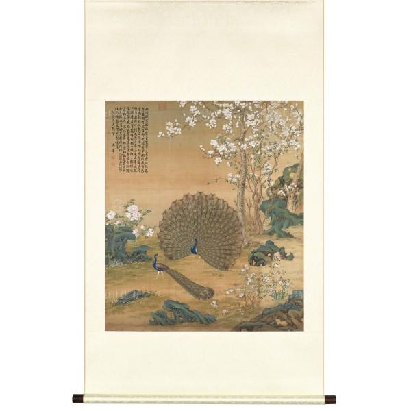Peacocks, Giuseppe Castiglione, Qing Dynasty, Scroll (L)