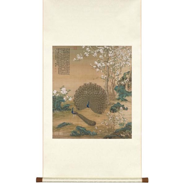 Peacocks, Giuseppe Castiglione, Qing Dynasty, Scroll (S)