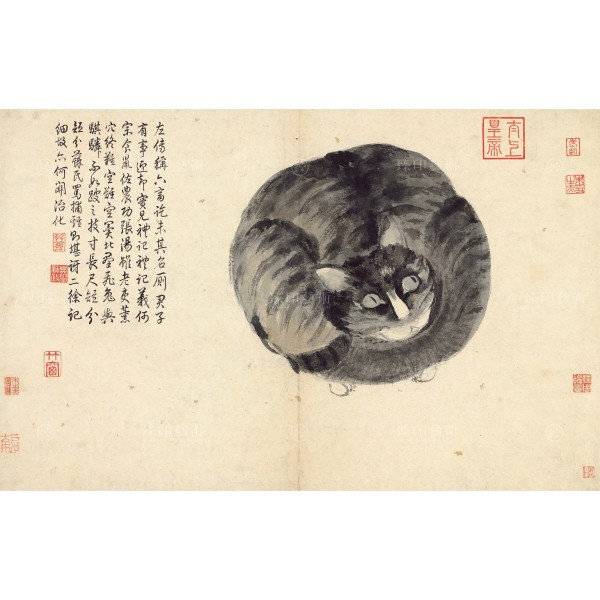 Album of Sketching from Life- Cat, Shen Zhou, Ming Dynasty, Giclée