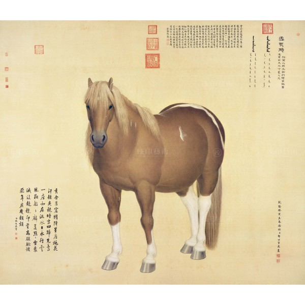 "Ten Steeds (""Snow-Flake Eagle""), Giuseppe Castiglione, Qing Dynasty, Giclée (S)"