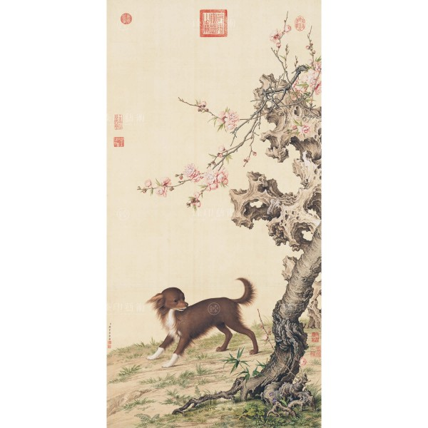 Long-haired Dog Beneath Blossoms, Giuseppe Castiglione, Qing Dynasty, Giclée