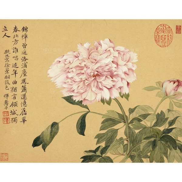 Album of Imitating Antiquity-Peonies, Yun Shou-ping, Qing Dynasty, Giclée