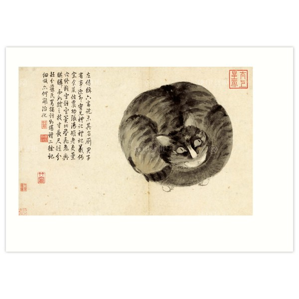 B4 Size, Print Card, Album of Sketching from Life–Cat, Shen Zhou, Ming Dynasty