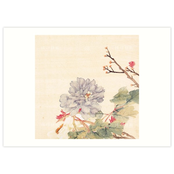B4 Size, Print Card, Peonies-Purple blue, Li Peiyu, Qing Dynasty