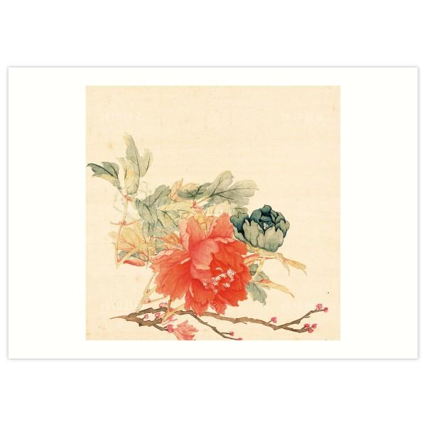B4 Size, Print Card, Peonies-Red, Li Peiyu, Qing Dynasty