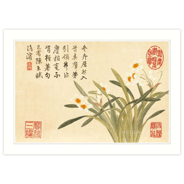 A4 Size, Print Card, Enchanting Fragrance–Chinese Sacred Lily, Dong Gao, Qing Dynasty