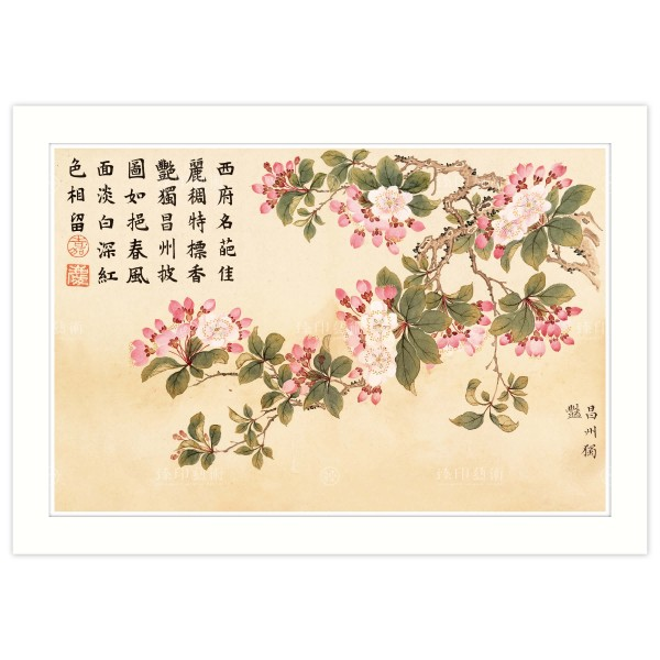 A4 Size, Print Card, Heavenly Aroma Volume–Unique Beauty in Chang Zhou (place name), Dong Gao, Qing Dynasty
