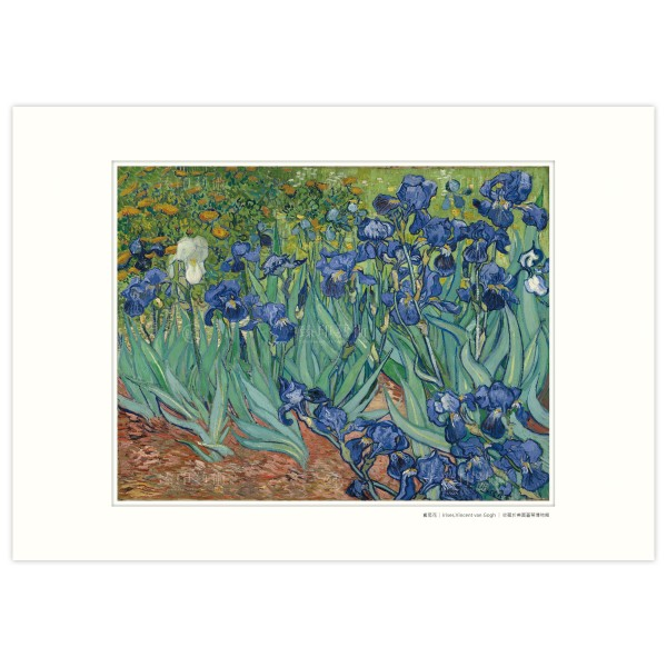 A3 Size, Print Card, Irises, Vincent Van Gogh