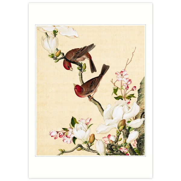 B4 Size, Print Card, Crab apple and Magnolia blossoms, Immortal Blossoms in an Everlasting Spring, Giuseppe Castiglione, Qing Dynasty