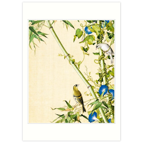 B4 Size, Print Card, Bamboo and Morning Glory, Immortal Blossoms in an Everlasting Spring, Immortal Blossoms in an Everlasting Spring, Giuseppe Castiglione, Qing Dynasty