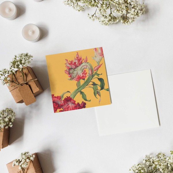 Message Card,  Immortal Blossoms in an Everlasting Spring.Celosia Cristata