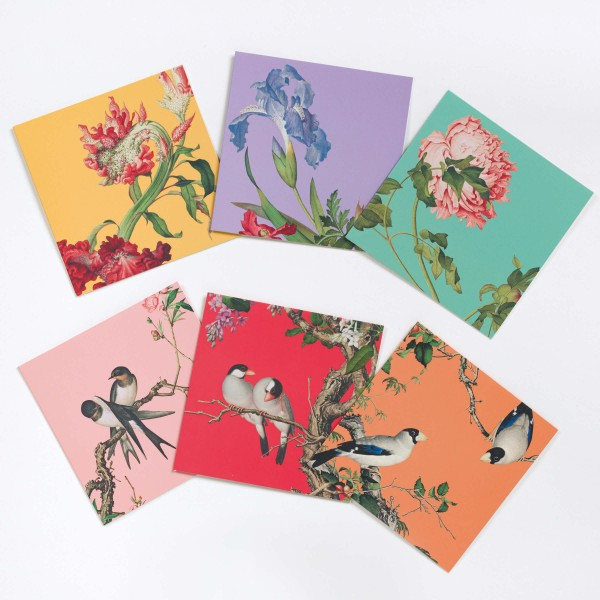 Message Card Variety Pack, Immortal Blossoms in an Everlasting Spring, 6 Cards for a Set