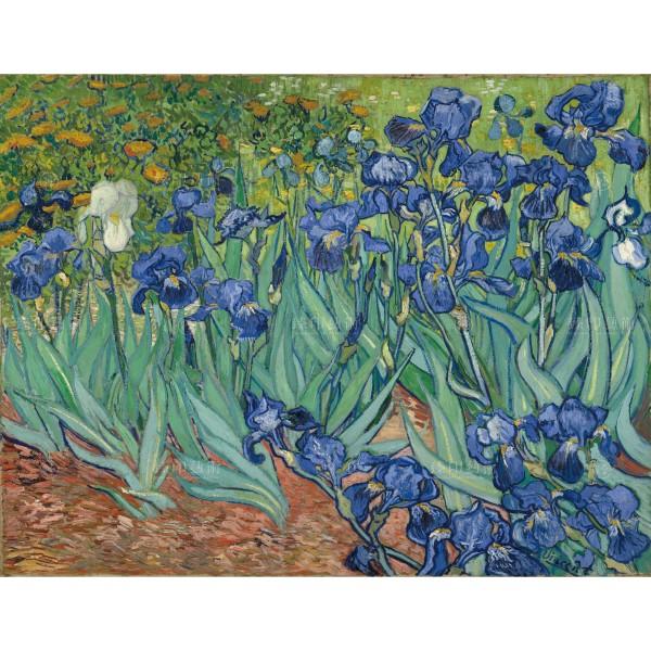 Irises,Vincent Van Gogh, Giclée