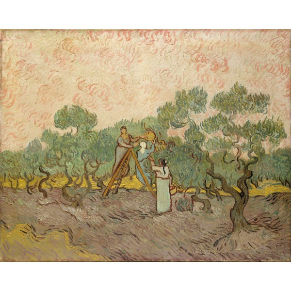 Women Picking Olives, Vincent Van Gogh, Giclée