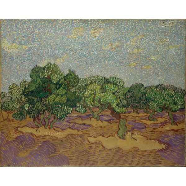 梵谷 橄欖樹
